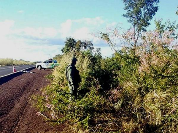 BR 135: rodovia da morte. Foto: Divulgação/PM-PI