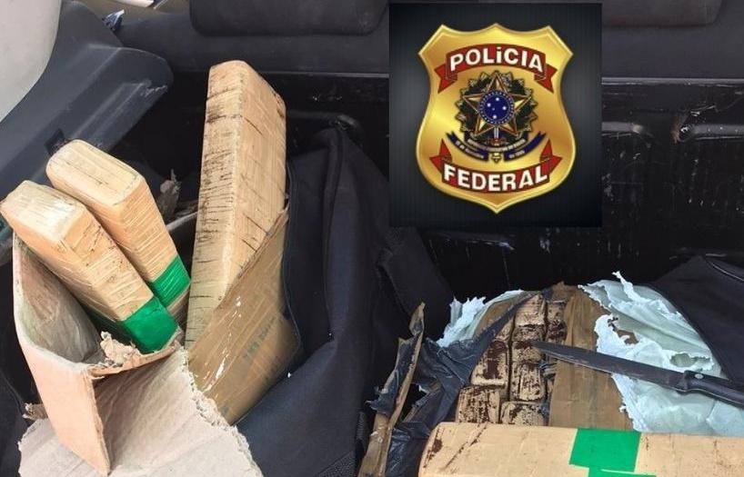 Droga apreendida pela Polícia Federal no Piauí Foto: Divulgação/PF-PI